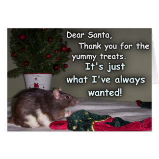 Card: Christmas Rat Dream Come True! Greeting Card