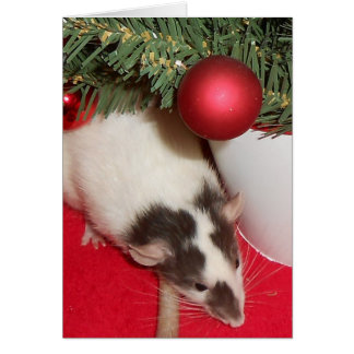 Card: Christmas Rats Greeting Card