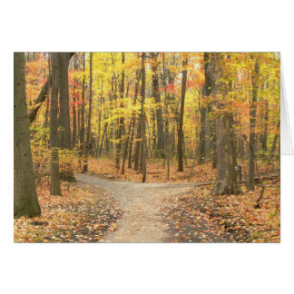 "Card, ""Fall Colors On Path Through Woods"" Card"
