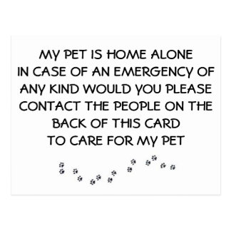 """CARD FOR """"YOUR PET"""" IN CASE YOU HAVE AN EMERGENCY POSTCARD"""