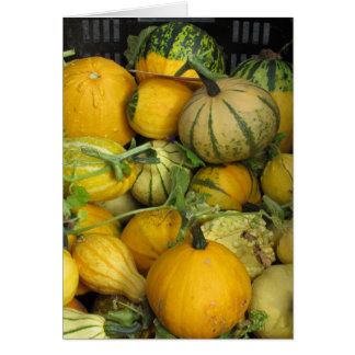 Card - Greeting - Summer squash