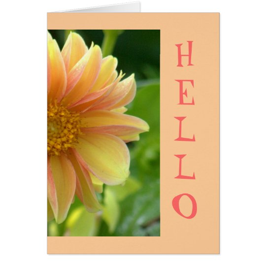 "card, ""Hello"", pretty Dahlia, salmon pink and yell Card"