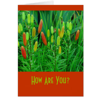 "card ""How Are You?"" Floral (photog)"