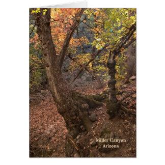 Card: Knarly Tree #4 Card