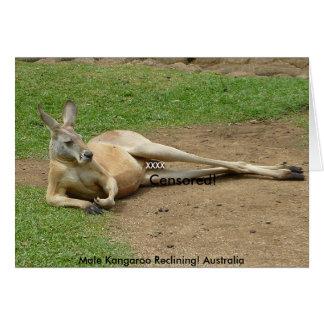 Card Male Kangaroo Reclining! Australia