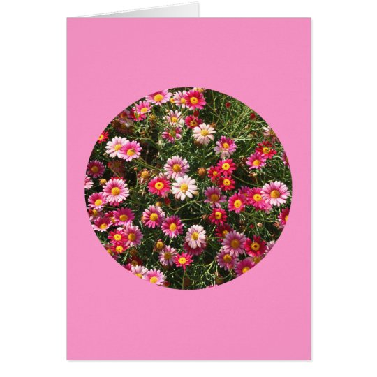 """Card, """"Painted Daisies in a Circle"""" F-1 Card"""