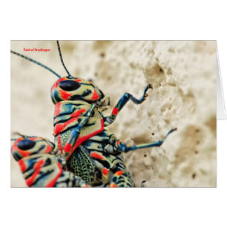 Card: Painted Grasshoppers #4