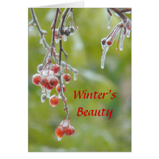 "CARD, PHOTOG. ""WINTER'S BEAUTY"" RE GREETING CARD"