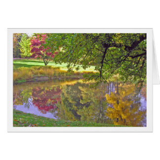 "Card ""Reflections in a Pond"""