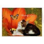 """Card White Cat Kitten Flowers """"Thinking of you"""" Greeting Card"""