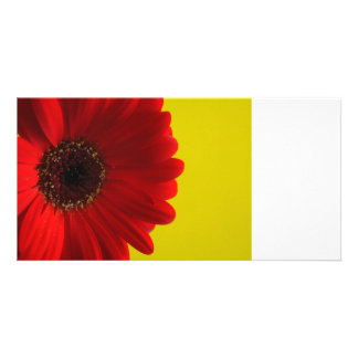 Card with red flower photo cards