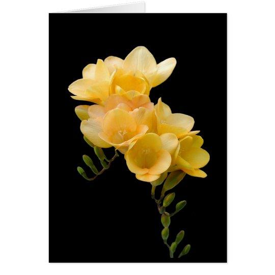 Card, Yellow Freesia # 1 Card