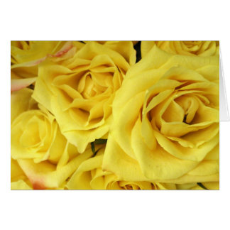 Card Yellow Roses