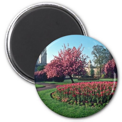 Cardiff City Hall From Alexandra Gardens flowers Fridge Magnet