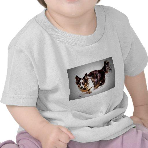 Cardigan Welsh Corgi - Maggie Shirts
