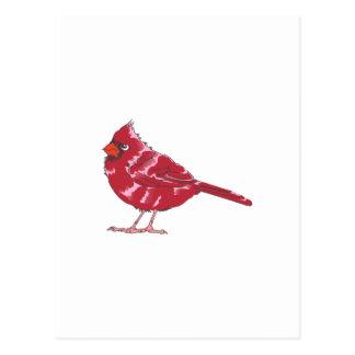 CARDINAL BIRD POSTCARD