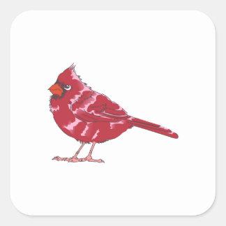 CARDINAL BIRD SQUARE STICKER