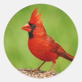 Cardinal Classic Round Sticker