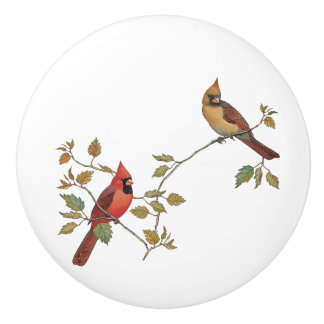 Cardinal Couple Ceramic Knob