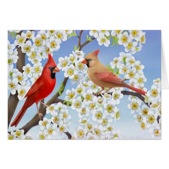 Cardinal Couple in Apple Blossoms Card
