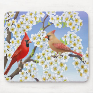 Cardinal Couple in Flowering Tree Mousepad