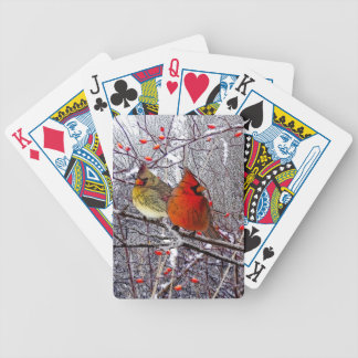 Cardinal Forest Bicycle Playing Cards