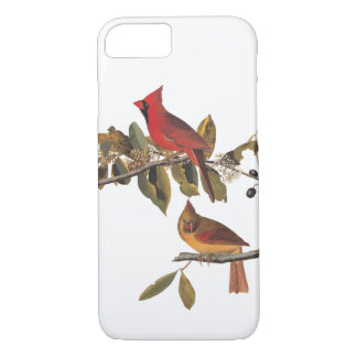 Cardinal Grosbeak Audubon Bird Vintage Art iPhone 7 Case