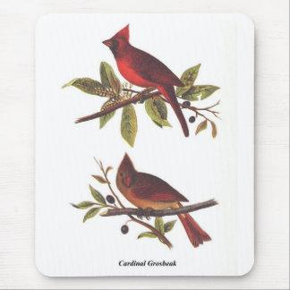 Cardinal Grosbeak Mouse Pad
