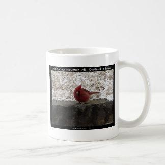 Cardinal Hot Springs Nat. Park Mt AR Gifts Apparel Basic White Mug
