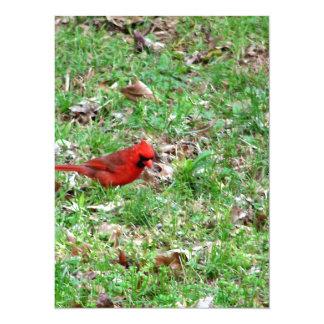 Cardinal In A Field Custom Invite