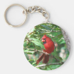 Cardinal in Holly Basic Round Button Key Ring