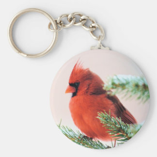 Cardinal in Snow Dusted Fir Key Ring