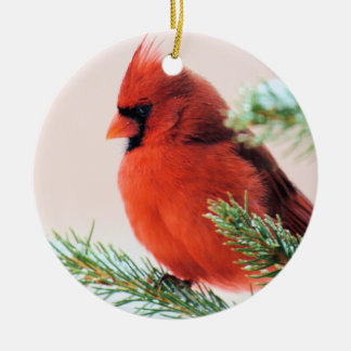 Cardinal in Snow Dusted Fir Round Ceramic Decoration
