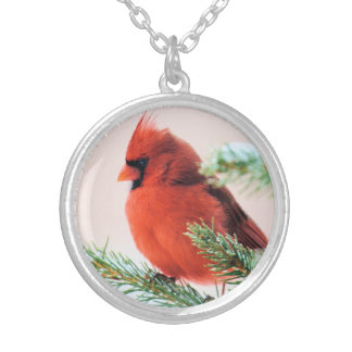 Cardinal in Snow Dusted Fir Round Pendant Necklace