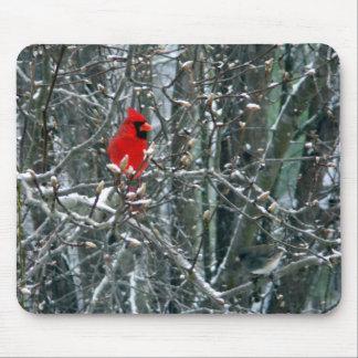 Cardinal in Snow Mouse Mat