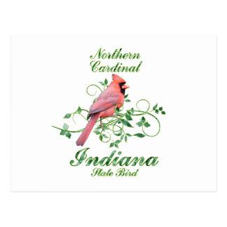 Cardinal Indiana State Bird Postcard