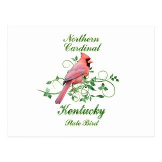 Cardinal Kentucky State Bird Postcard