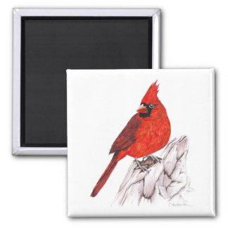 Cardinal Magnet