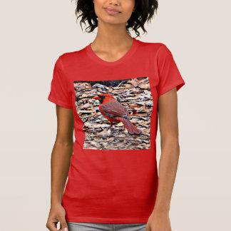 Cardinal (Male) T-Shirt