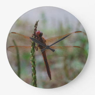 Cardinal Meadowhawk Dragonfly Large Clock
