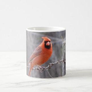 Cardinal on barbed wire coffee mug