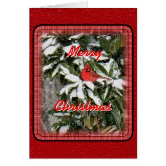Cardinal on Snowy Magnolia- customize Card