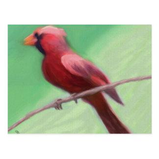 Cardinal Perched Postcard