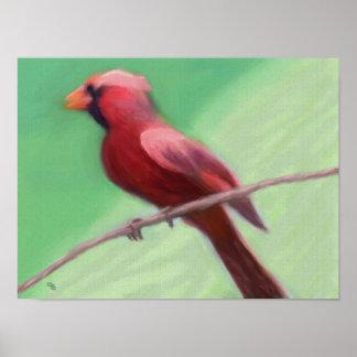 Cardinal Perched Print