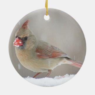 Cardinal photo christmas ornament