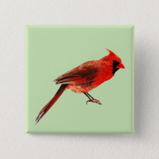 Cardinal(s) 15 Cm Square Badge