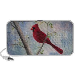 Cardinal Speaker