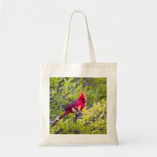 Cardinal tote budget tote bag