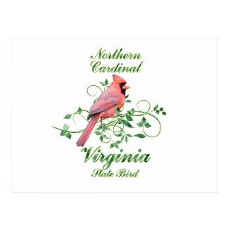 Cardinal Virginia State Bird Postcards