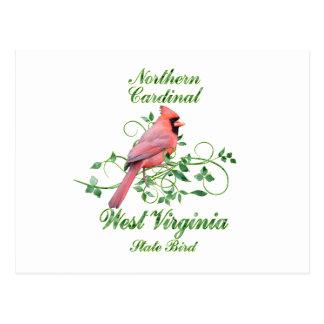 Cardinal West Virginia State Bird Postcard